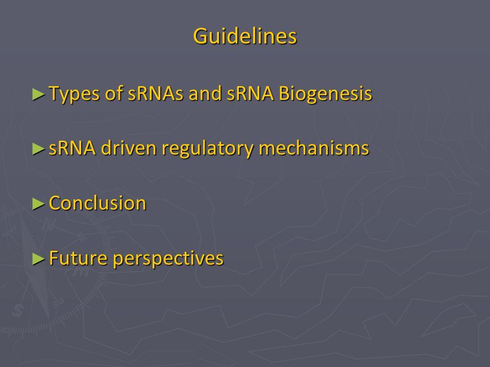 Guidelines ► Types of sRNAs and sRNA Biogenesis ► sRNA driven regulatory mechanisms ► Conclusion ► Future perspectives