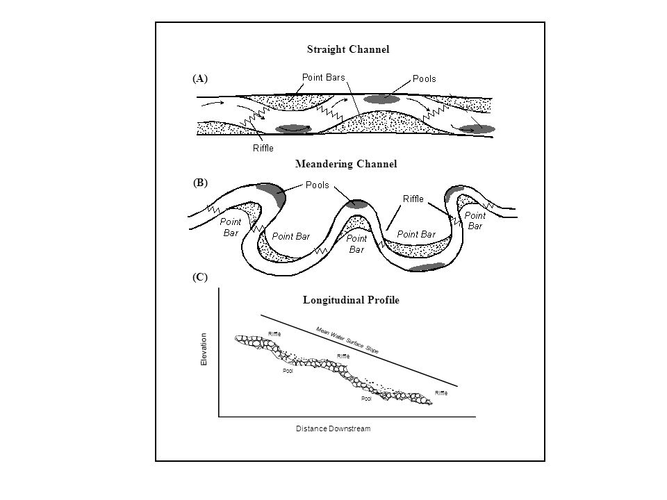 Elevation Distance Downstream Riffle Pool Mean Water Surface Slope (A) (B) (C) Meandering Channel Straight Channel Longitudinal Profile