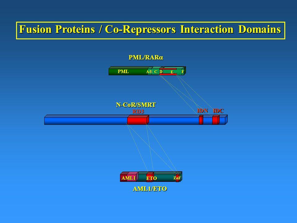 A/B C D E PML F PML/RAR  IDN IDCN-CoR/SMRTRD3 AML1/ETO ZnF AML1 Fusion Proteins / Co-Repressors Interaction Domains ETO