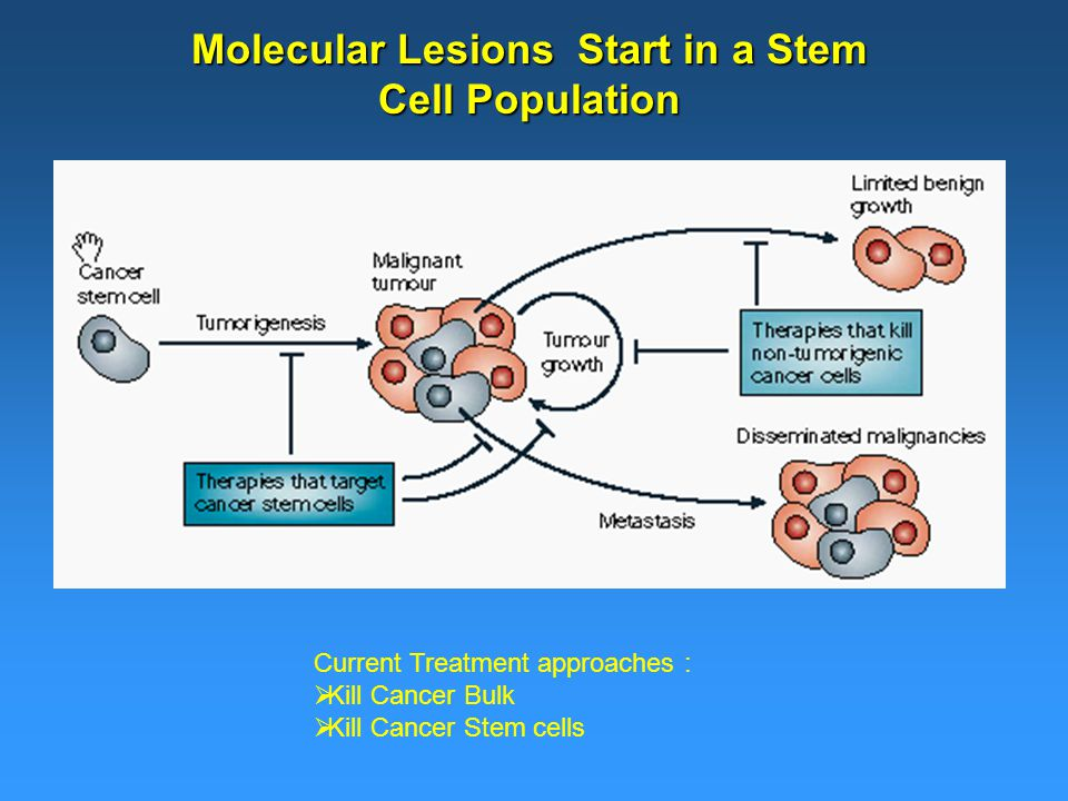 Molecular Lesions Start in a Stem Cell Population Current Treatment approaches :  Kill Cancer Bulk  Kill Cancer Stem cells