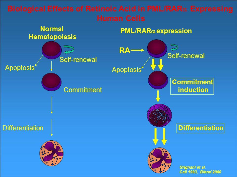Oncogenic Biological Effects of PML/RAR  Expression in Human Cells Grignani et al.