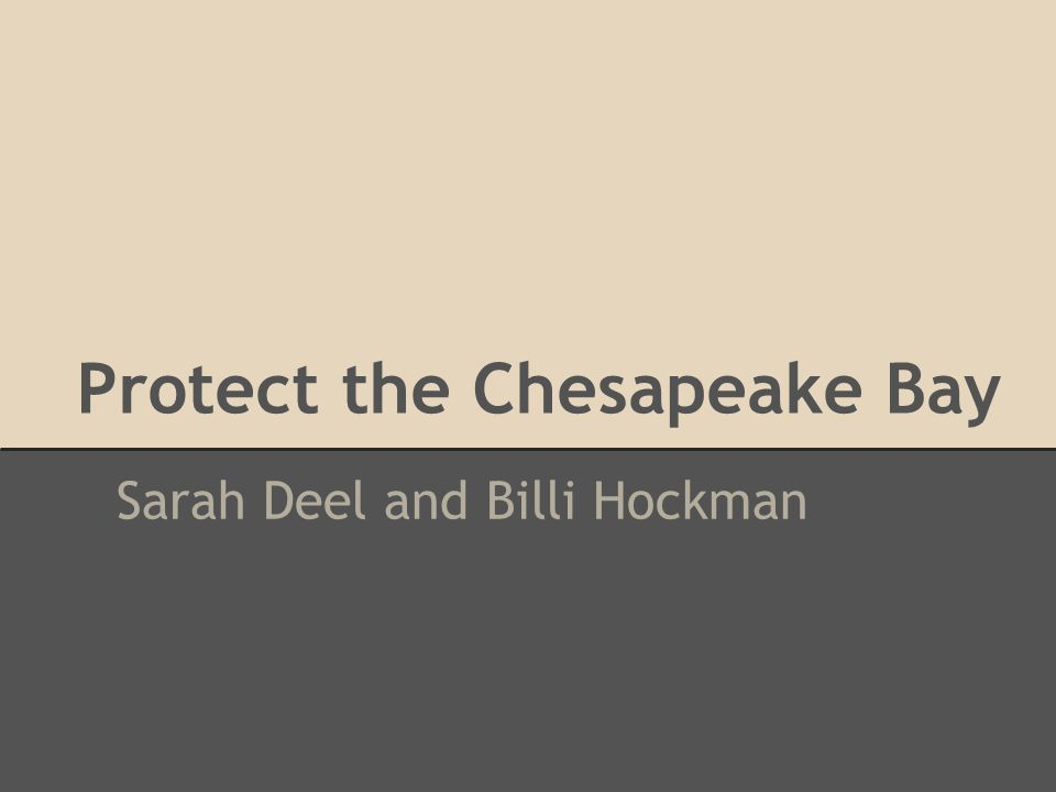 Protect the Chesapeake Bay Sarah Deel and Billi Hockman