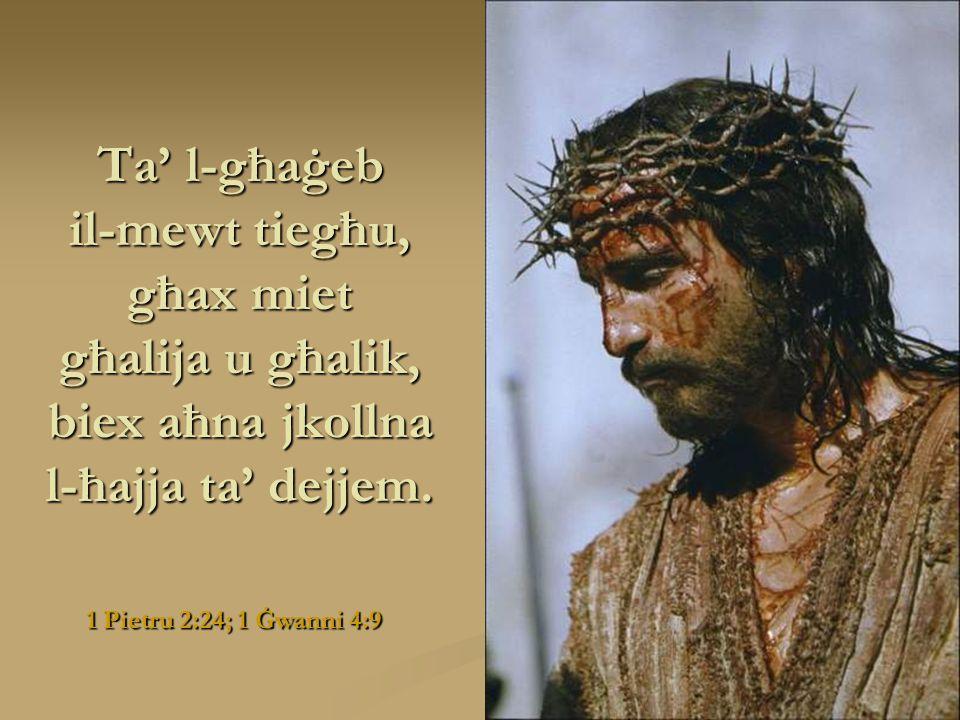 Atti 10:38 Ta' l-għaġeb hu ismu għax ta' l-għaġeb kien f'ħajtu, għaddej jagħmel il-ġid u jfejjaq lil dawk kollha li kienu maħkuma mix-xitan.