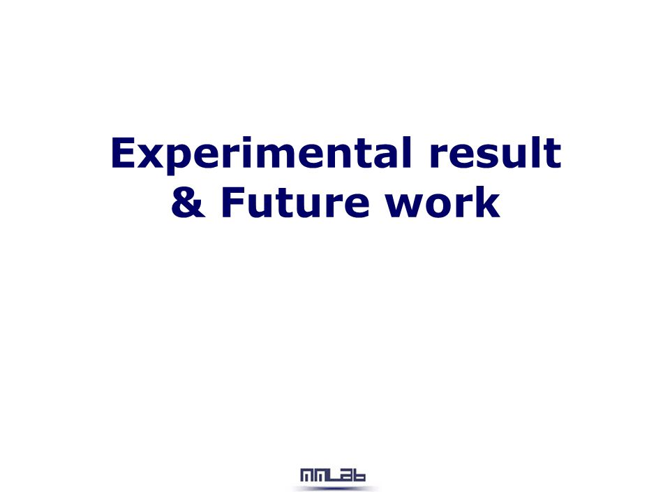 Experimental result & Future work