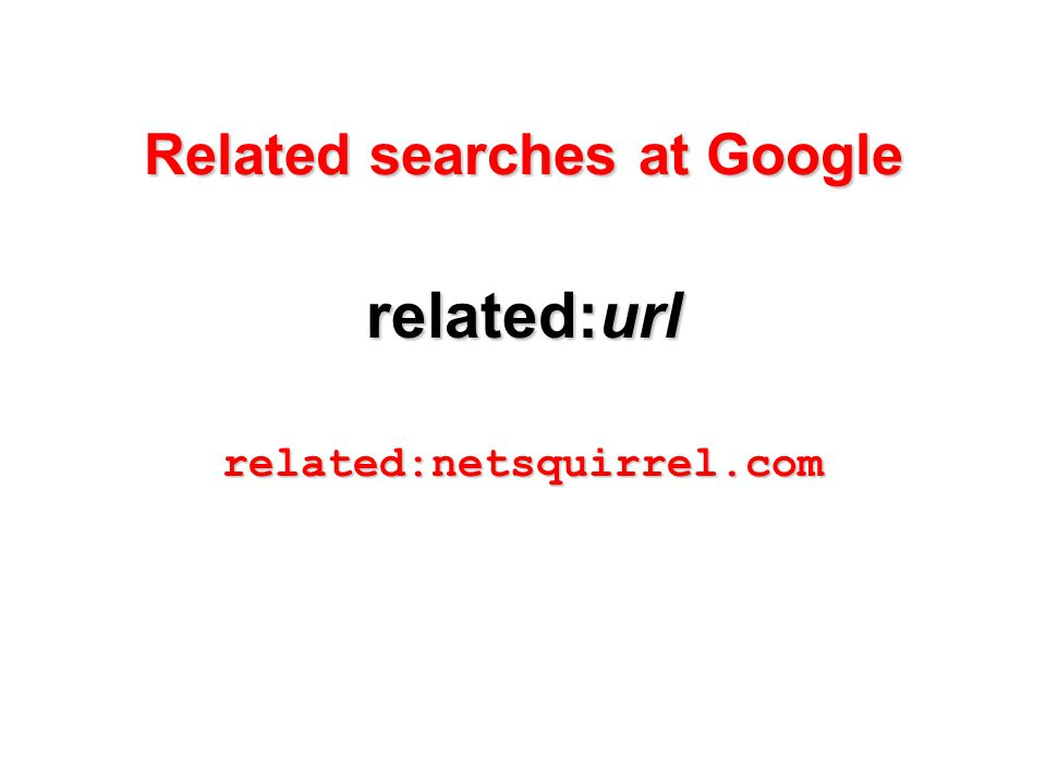 Related searches at Google related:url related:netsquirrel.com