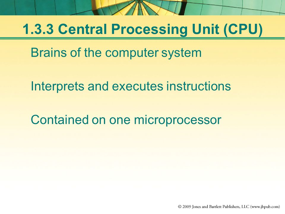 Brains of the computer system Interprets and executes instructions Contained on one microprocessor Central Processing Unit (CPU)
