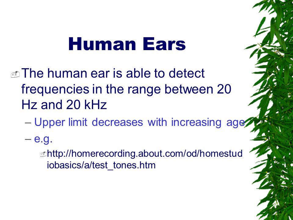 Human Ears  Comparison