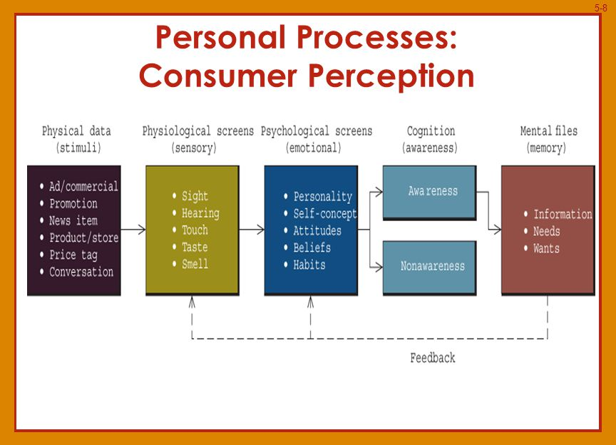5-19 Purchase Decision and Postpurchase Evaluation Evoked Set: mp3 Players  Apple  Microsoft  Rio  SanDisk