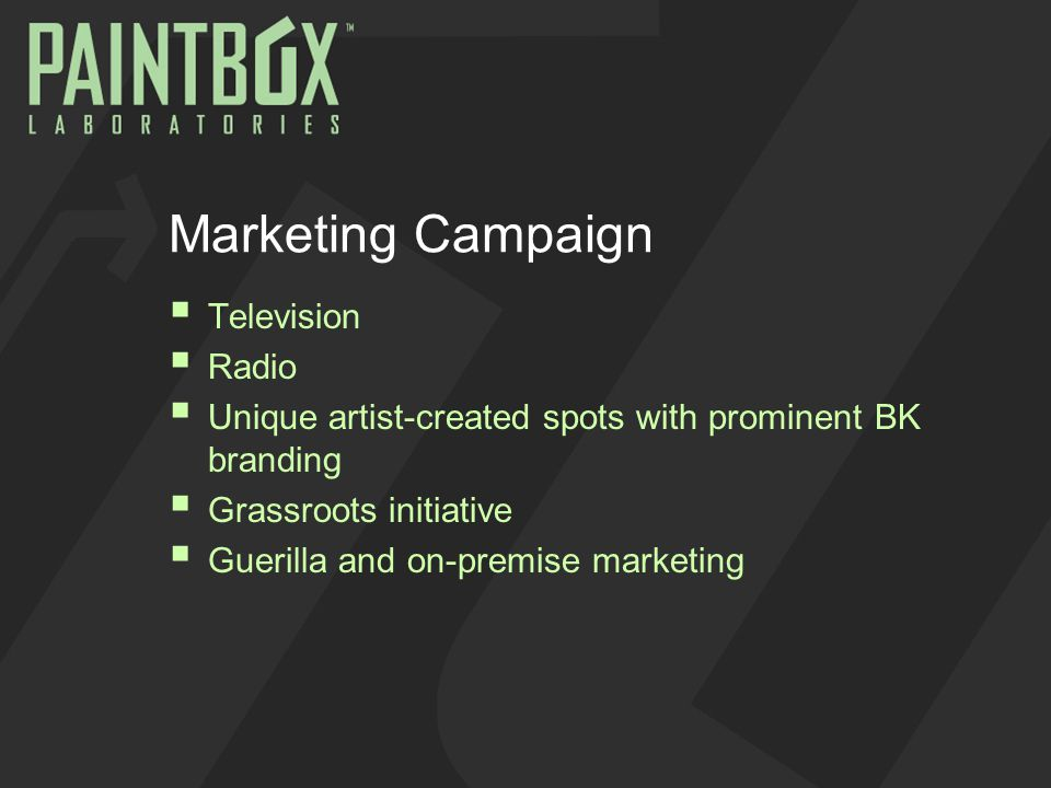 Marketing Campaign  Television  Radio  Unique artist-created spots with prominent BK branding  Grassroots initiative  Guerilla and on-premise marketing