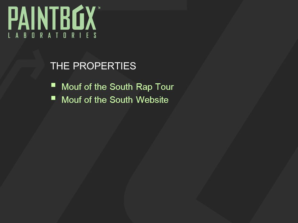 THE PROPERTIES  Mouf of the South Rap Tour  Mouf of the South Website