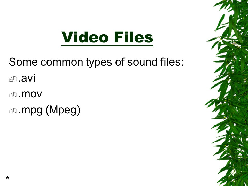 Video Files Some common types of sound files: .avi .mov .mpg (Mpeg) *