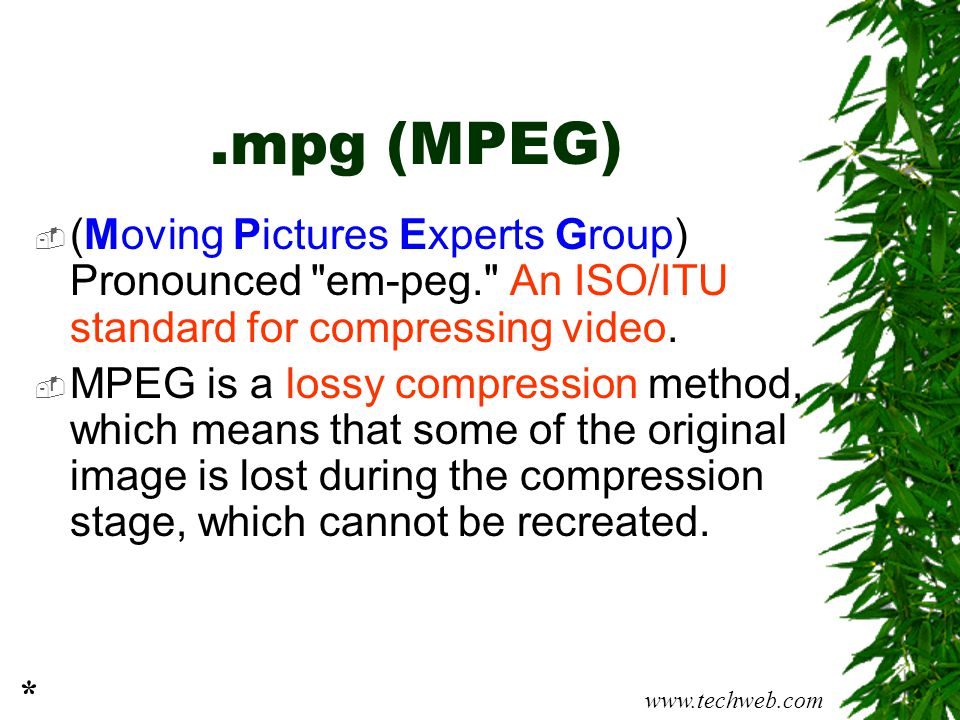 .mpg (MPEG)  (Moving Pictures Experts Group) Pronounced