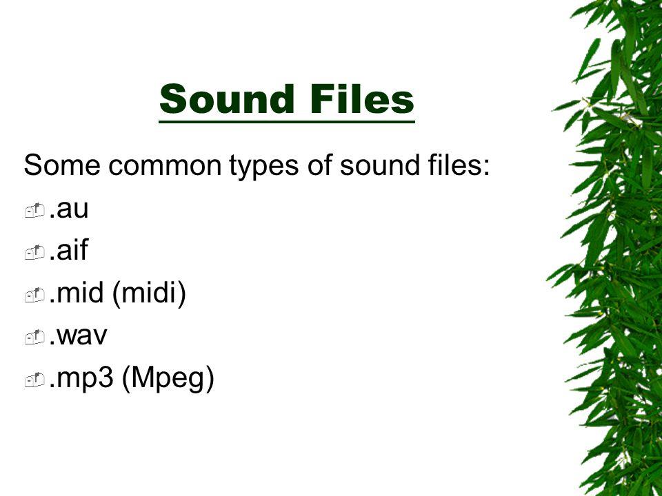 Sound Files Some common types of sound files: .au .aif .mid (midi) .wav .mp3 (Mpeg)