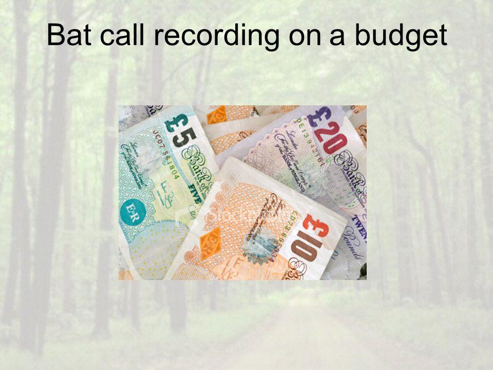 Bat call recording on a budget