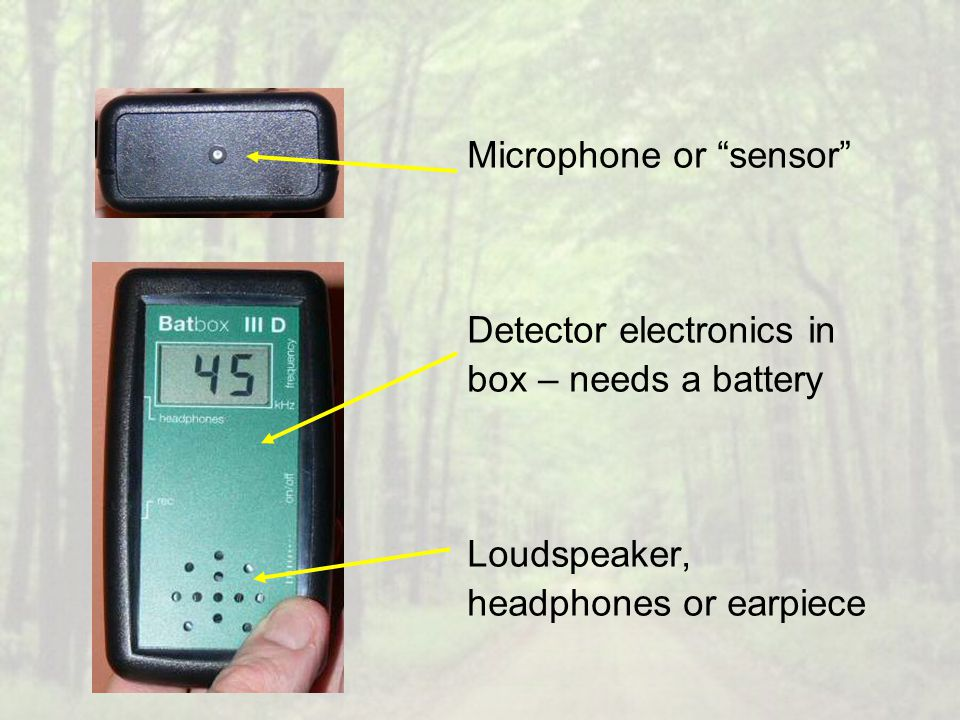 "Microphone or ""sensor"" Detector electronics in box – needs a battery Loudspeaker, headphones or earpiece"