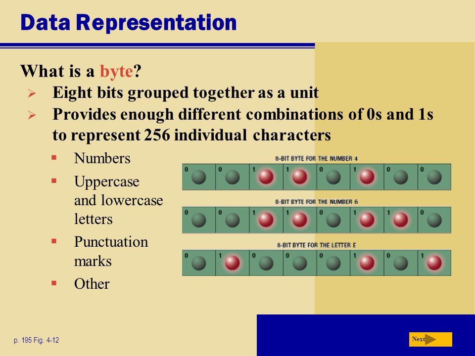 Data Representation What is a byte.p. 195 Fig.