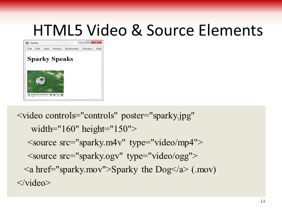 HTML5 Video & Source Elements <video controls= controls poster= sparky.jpg width= 160 height= 150 > Sparky the Dog (.mov) 14