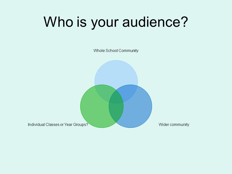 Who is your audience Whole School Community Wider communityIndividual Classes or Year Groups