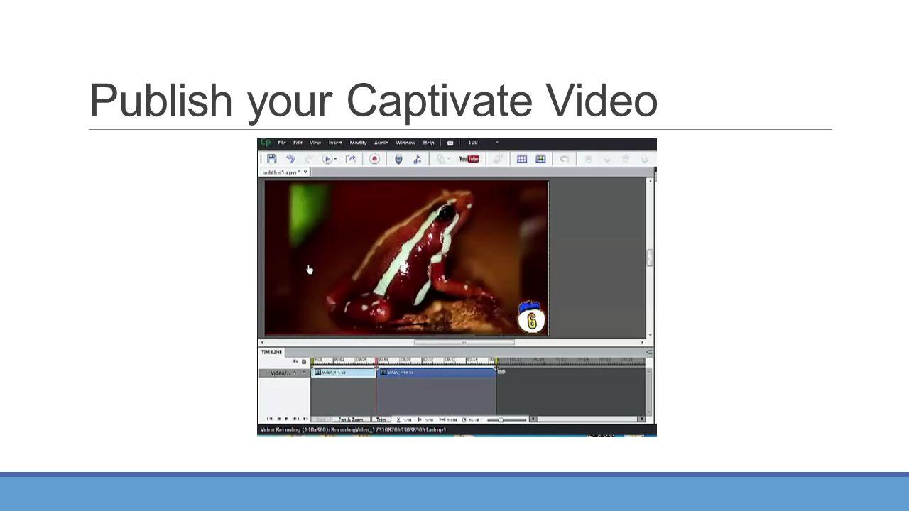 Publish your Captivate Video