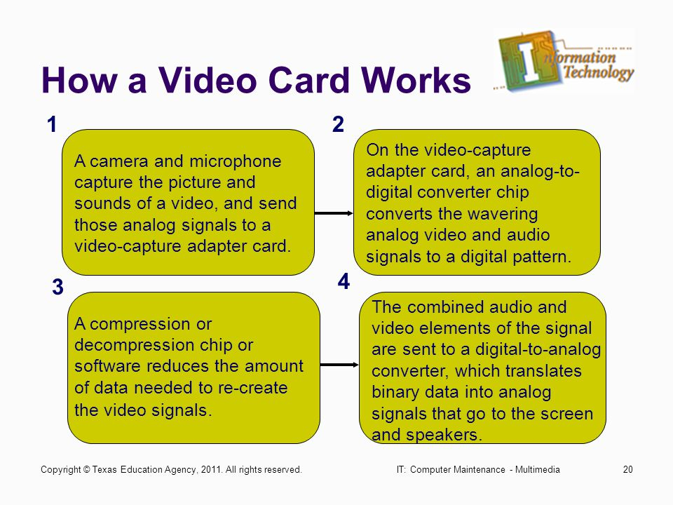 IT: Computer Maintenance - Multimedia20 How a Video Card Works A camera and microphone capture the picture and sounds of a video, and send those analo