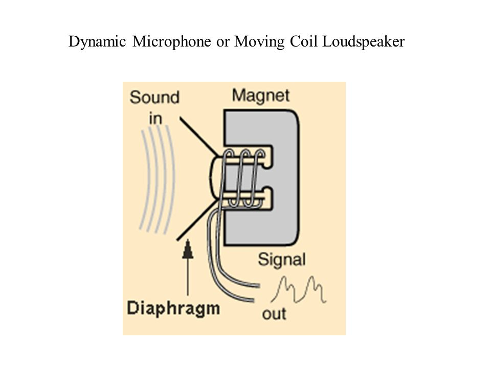 Dynamic Microphone or Moving Coil Loudspeaker