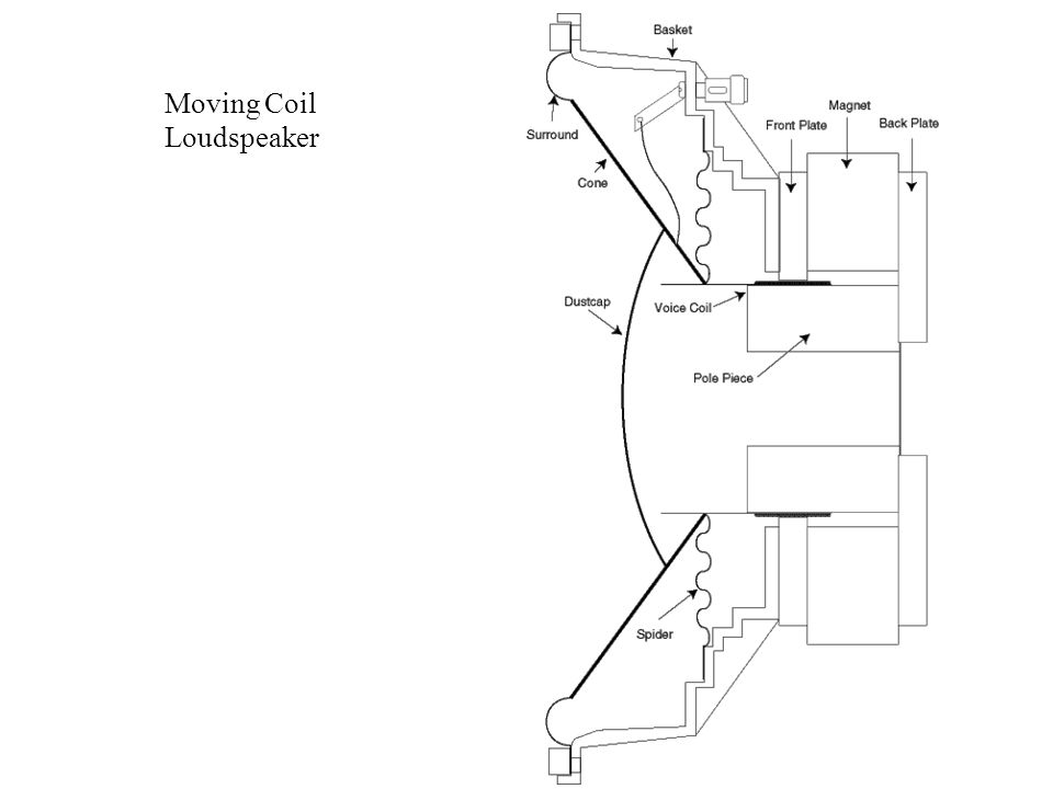 Moving Coil Loudspeaker