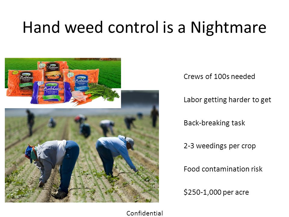 Hand weed control is a Nightmare Crews of 100s needed Labor getting harder to get Back-breaking task 2-3 weedings per crop Food contamination risk $25