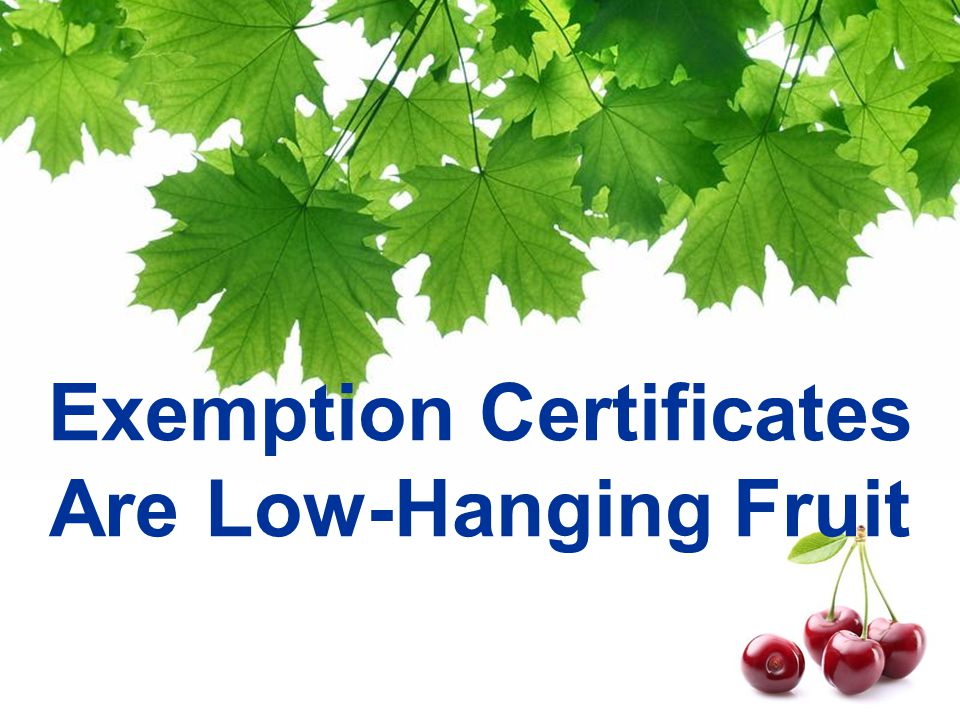 Exemption Certificates Are Low-Hanging Fruit
