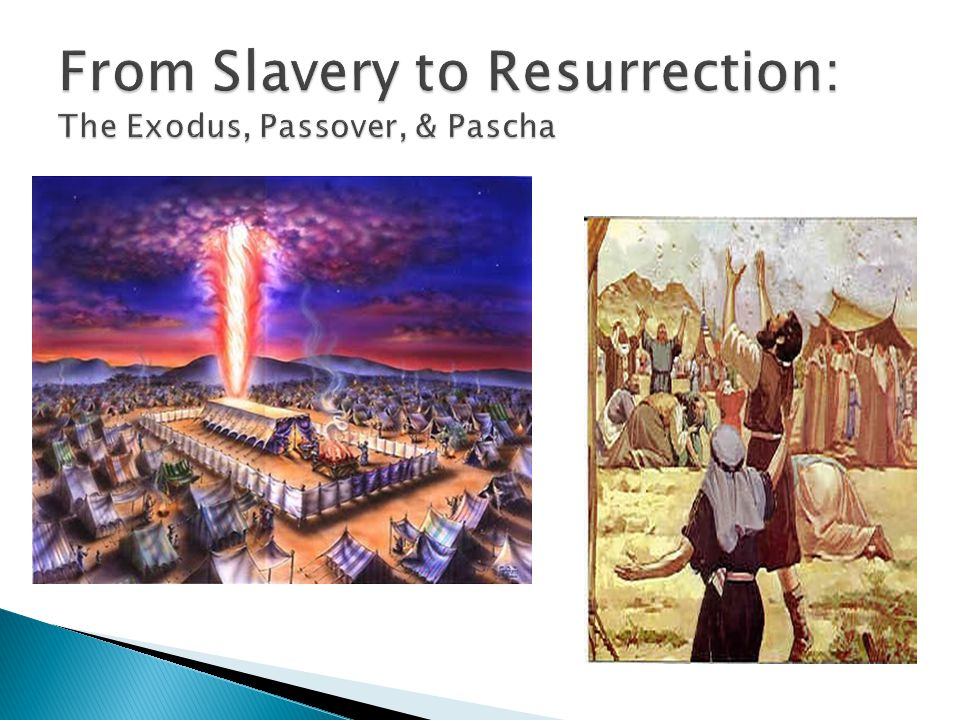  Cover the basics of the Exodus narrative  Speak of some of the most significant aspects of the story ◦ The promise made by God to Abraham in Genesis and its importance in Exodus ◦ Deliverance from slavery ◦ Giving of the Law in the wilderness  Connections between Exodus and Pascha
