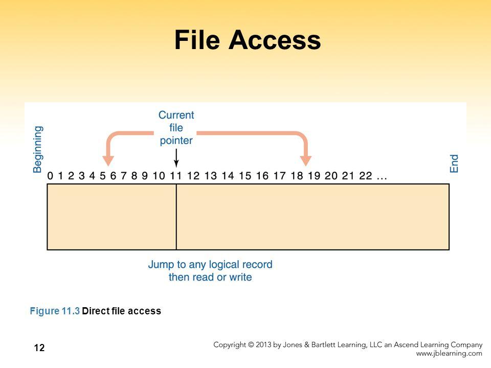12 File Access Figure 11.3 Direct file access