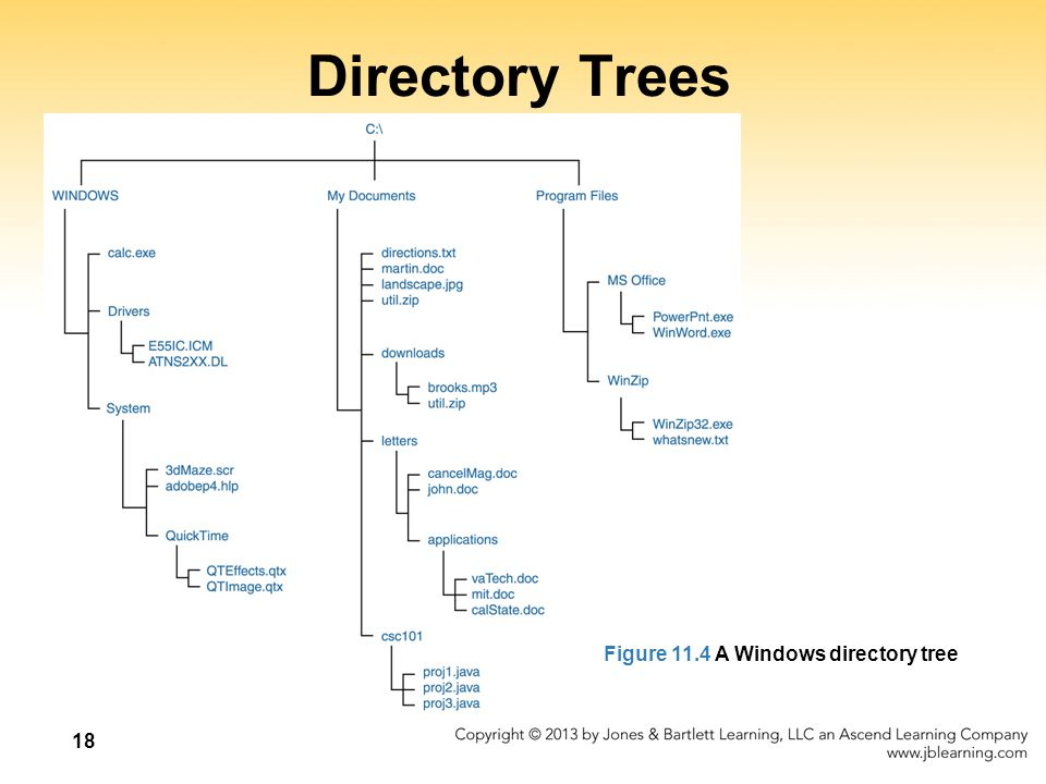18 Directory Trees Figure 11.4 A Windows directory tree