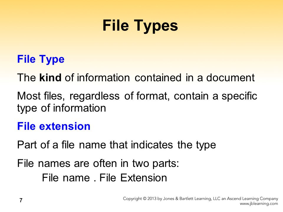 8 File Types What kinds of files are the following.