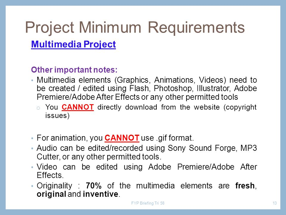 Multimedia Project Other important notes: Multimedia elements (Graphics, Animations, Videos) need to be created / edited using Flash, Photoshop, Illus