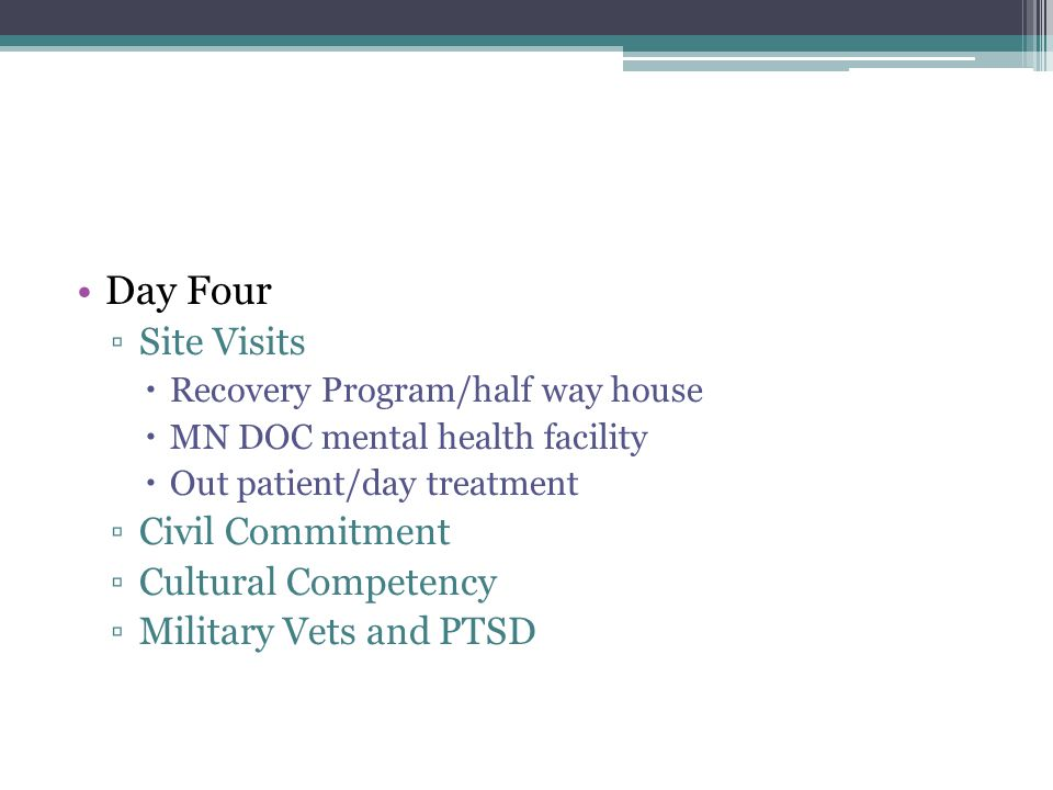 Day Four ▫Site Visits  Recovery Program/half way house  MN DOC mental health facility  Out patient/day treatment ▫Civil Commitment ▫Cultural Compet