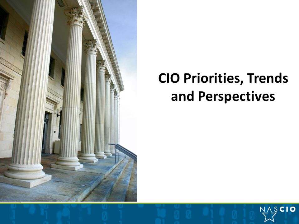 CIO Priorities, Trends and Perspectives