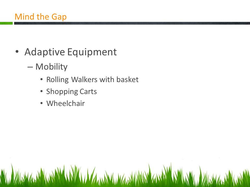 Library Services for Older Adults Mind the Gap Adaptive Equipment – Mobility Rolling Walkers with basket Shopping Carts Wheelchair