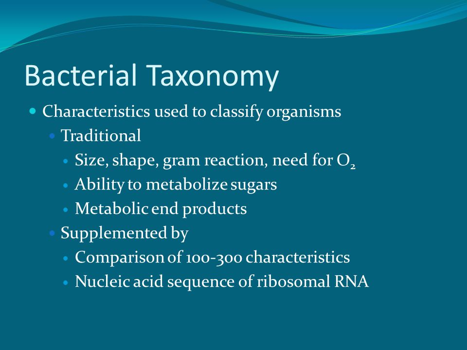 Bacterial Taxonomy Characteristics used to classify organisms Traditional Size, shape, gram reaction, need for O 2 Ability to metabolize sugars Metabolic end products Supplemented by Comparison of 100-300 characteristics Nucleic acid sequence of ribosomal RNA