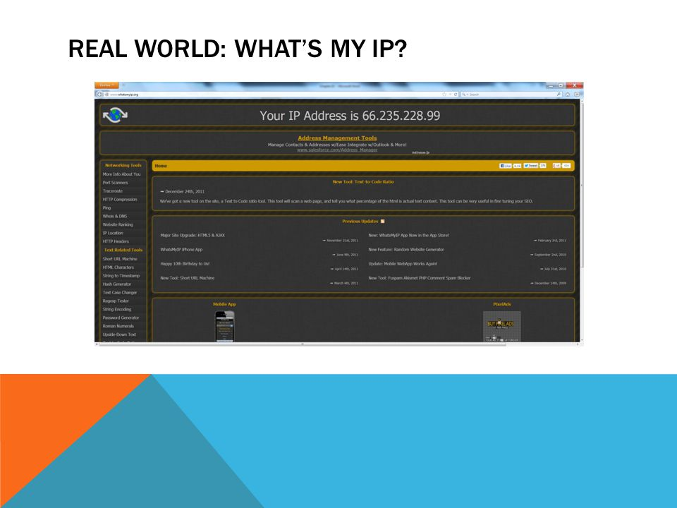 REAL WORLD: WHAT'S MY IP