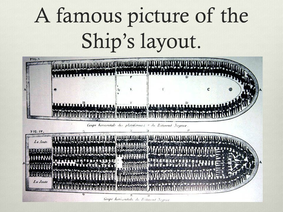 A famous picture of the Ship's layout.