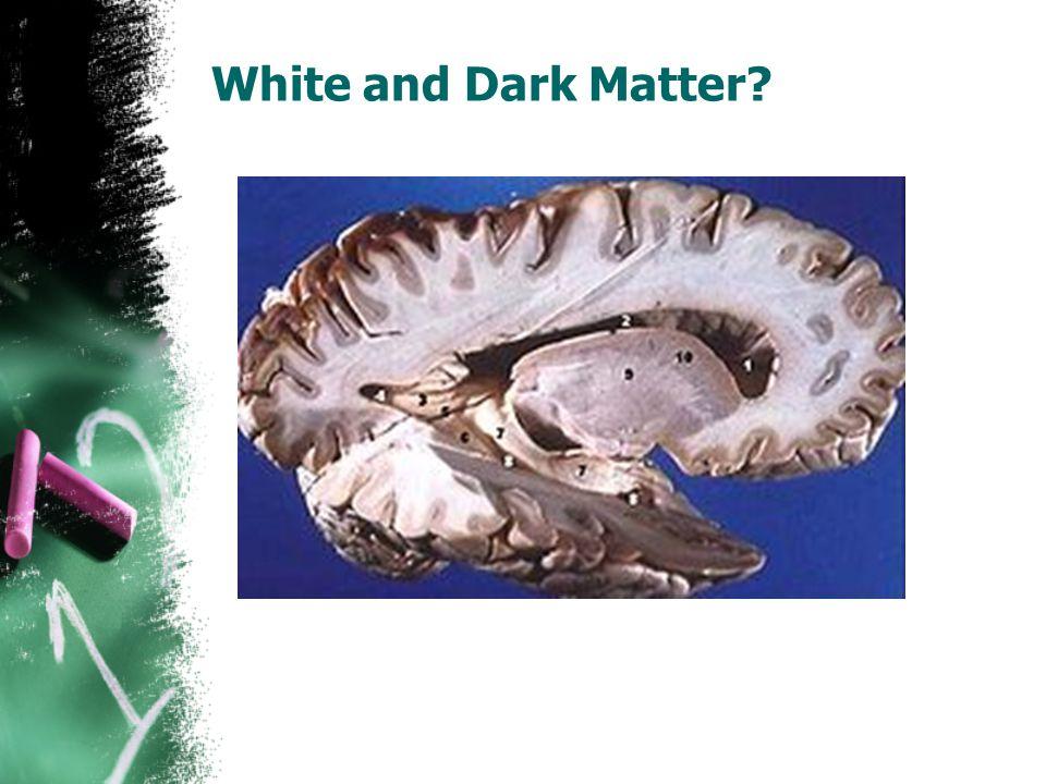 White and Dark Matter