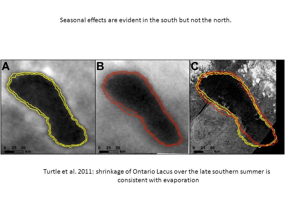 Turtle et al.