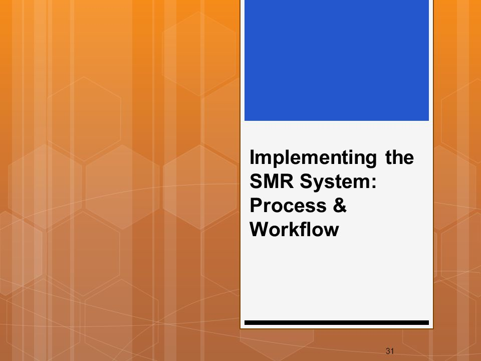 31 Implementing the SMR System: Process & Workflow
