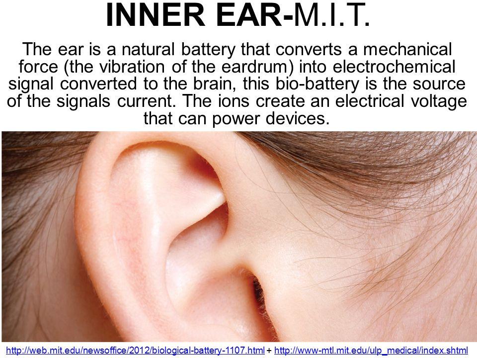 INNER EAR-M.I.T.