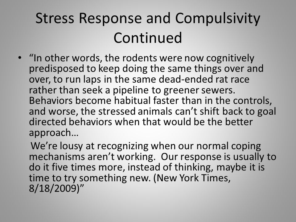 Stress Response and Compulsivity Continued In other words, the rodents were now cognitively predisposed to keep doing the same things over and over, to run laps in the same dead-ended rat race rather than seek a pipeline to greener sewers.