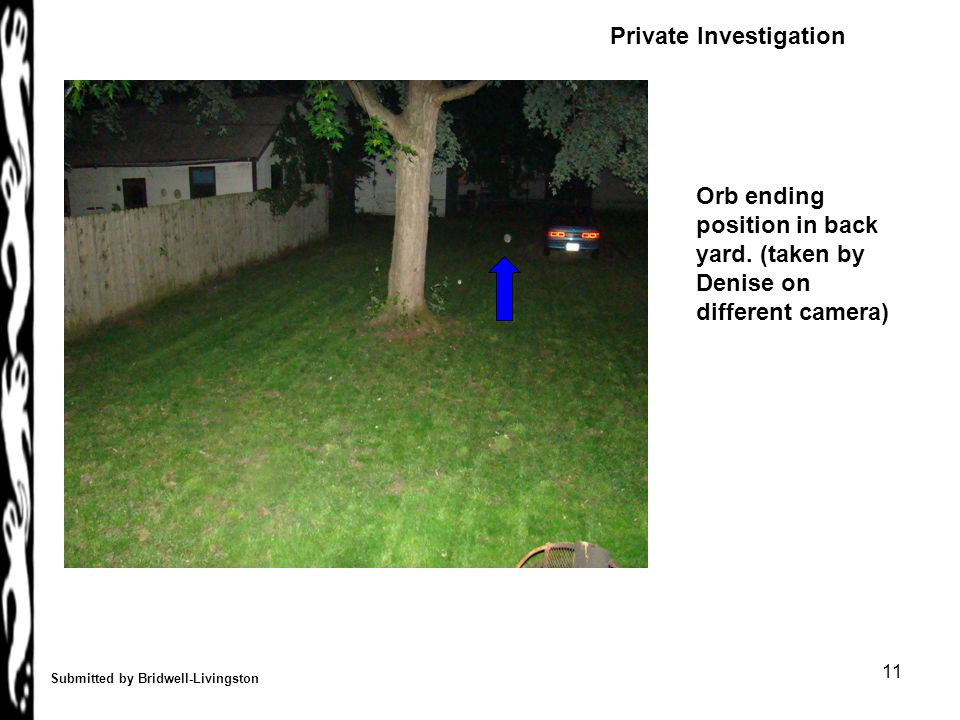 11 Submitted by Bridwell-Livingston Orb ending position in back yard.