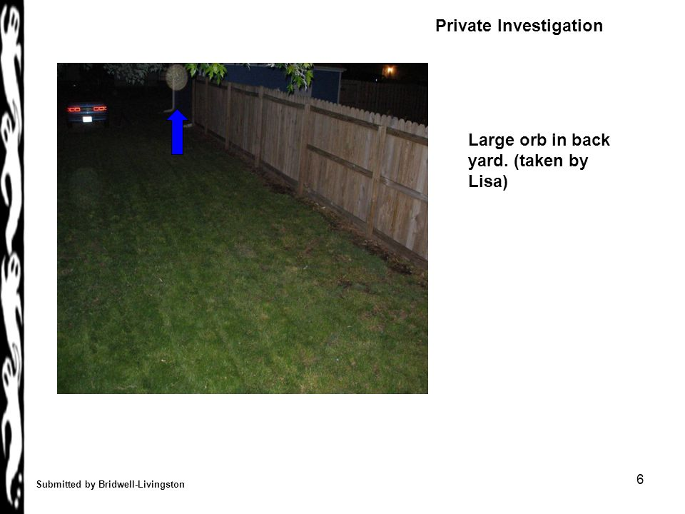 6 Submitted by Bridwell-Livingston Large orb in back yard. (taken by Lisa) Private Investigation