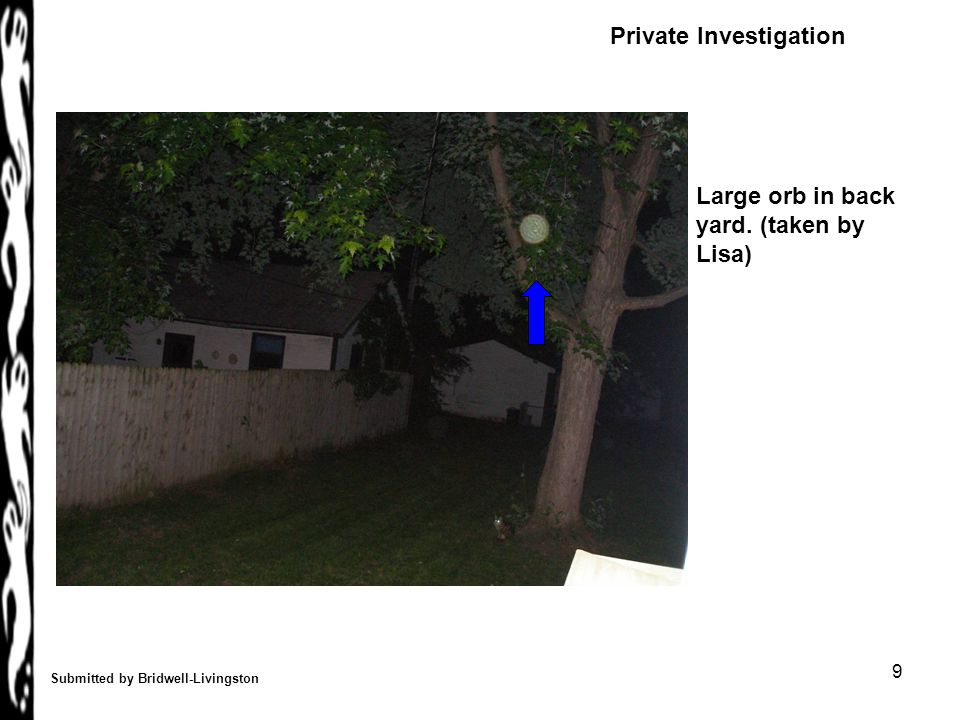 9 Submitted by Bridwell-Livingston Large orb in back yard. (taken by Lisa) Private Investigation