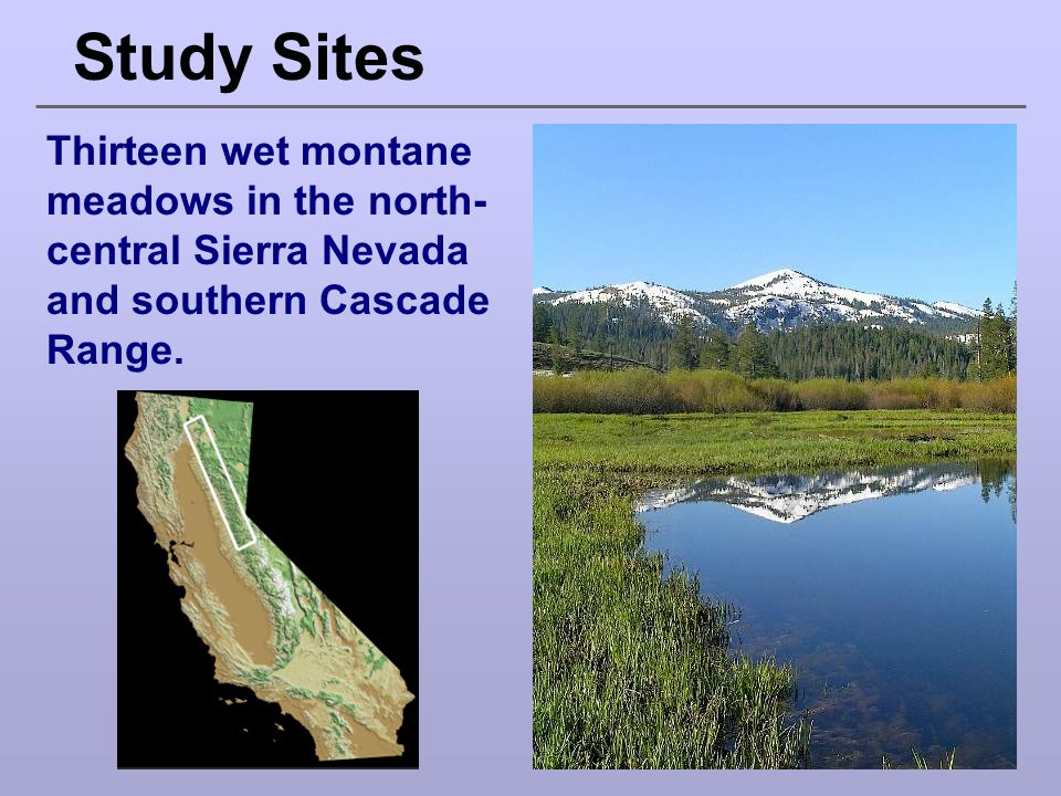 Study Sites Thirteen wet montane meadows in the north- central Sierra Nevada and southern Cascade Range.