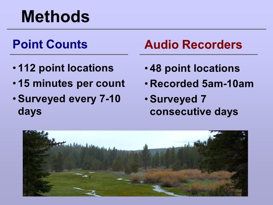 Methods Point Counts 112 point locations 15 minutes per count Surveyed every 7-10 days Audio Recorders 48 point locations Recorded 5am-10am Surveyed 7