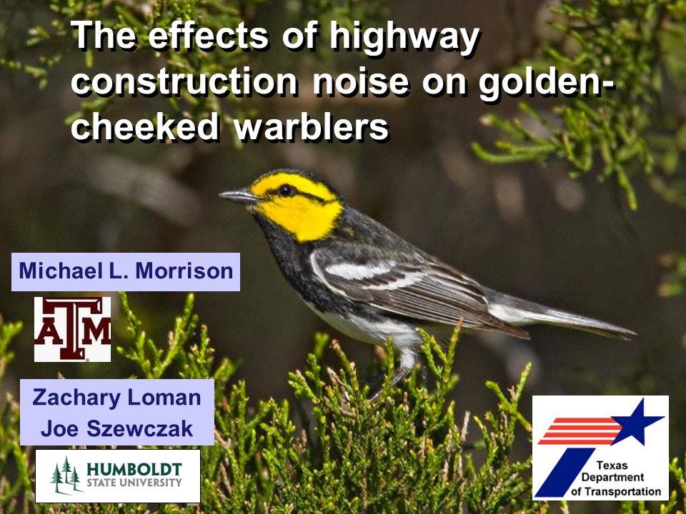 The effects of highway construction noise on golden- cheeked warblers Zachary Loman Joe Szewczak Michael L. Morrison
